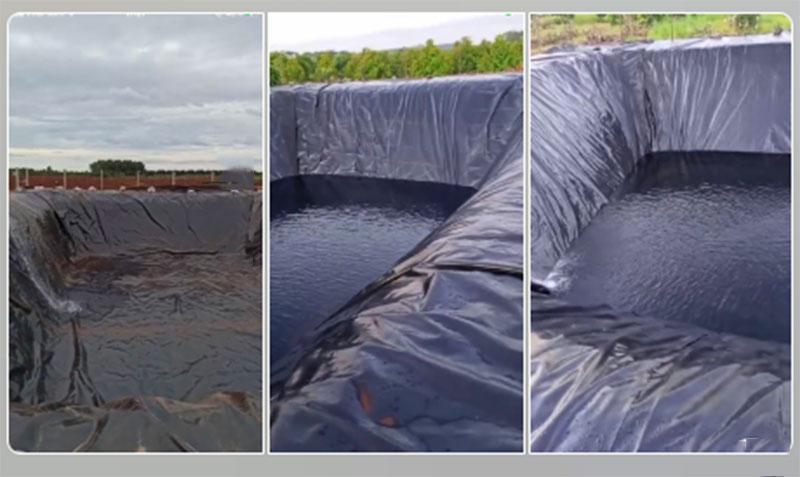 Bạt nhựa HDPE lót ao hồ chống thấm Bàu Bàng